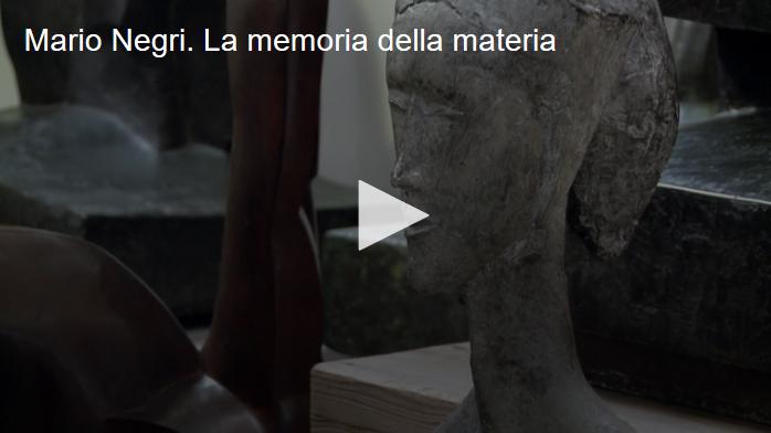 Mario Negri. La memoria della materia